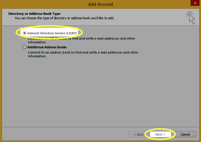 Select the Internet Directory Service (LDAP) radio button and click the Next button.