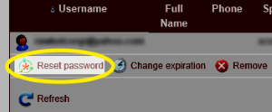 Image of the Reset password link highlighted